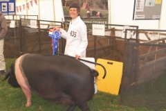 Reserve Best in Show at Cranleigh